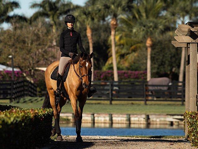 Wissenschaftler klären auf: So vermeiden Reiter einen  lebensgefährlichen Hitzschlag beim Pferd!