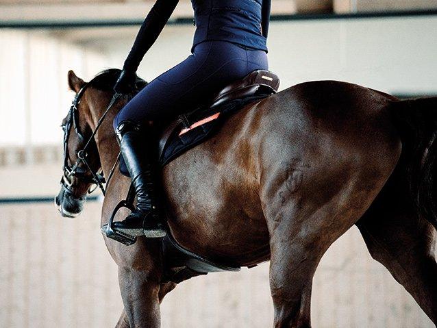 Alerte tendance pour les cavaliers : la collection hiver du legging d'équitation respirant!