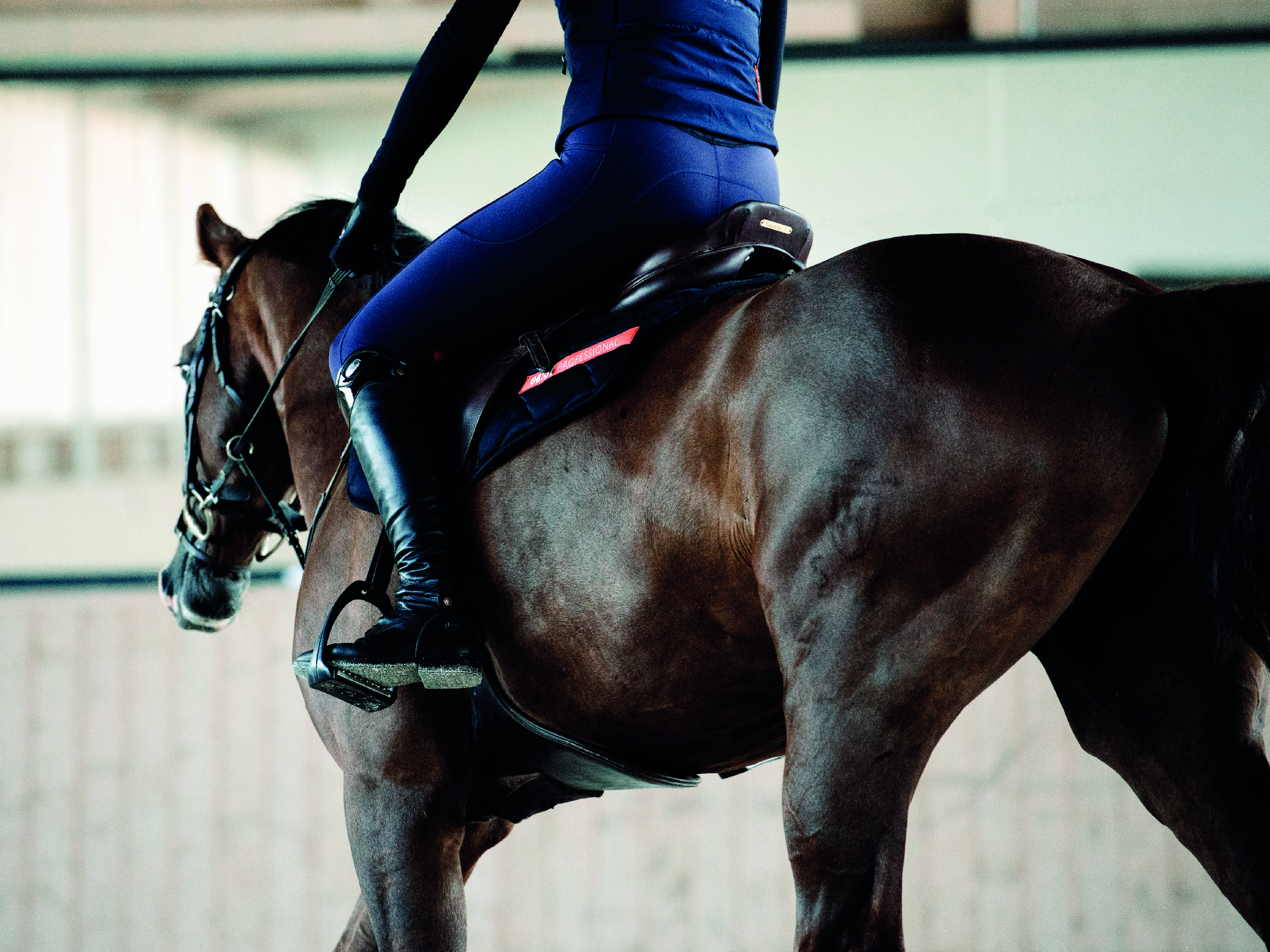 Trend alert for all riders: The new breathable winter edition of the riding leggings!