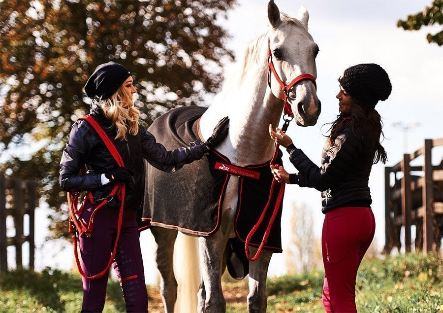 Riding in winter: In these breeches you will not be cold