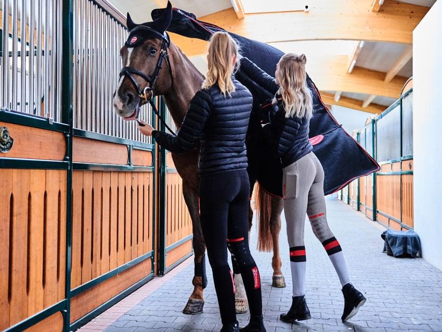 Couvrir, découvrir, changer de couverture - une vétérinaire vous explique comment couvrir de manière appropriée son cheval lors des saisons de transition.