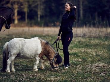 Tierärztin erklärt: Horrorszenario Kolik. Wie beuge ich vor?